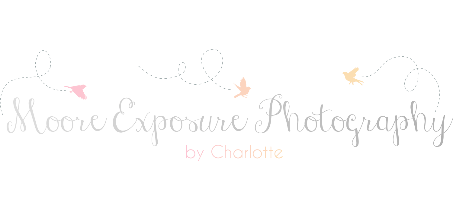 Moore Exposure Photography